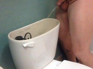 Peking in hotel toilet tank again, so much fun!