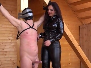 Cock and nipple torture