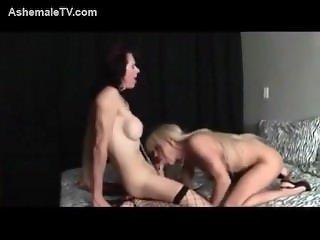 Mature blonde tranny pounding her shemale apprentice
