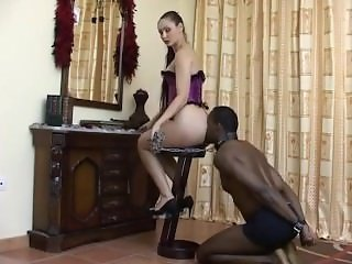 Ass Slave Ass licking