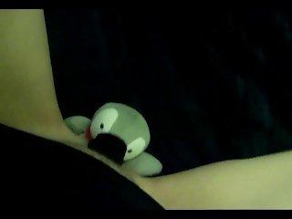 Fucking little penguin toy