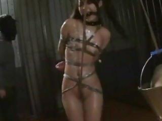 Asian cunt Suzu Wakana gets bondage tortured and whipped lik2